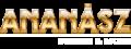 Ananász design shoprenter webáruház testreszabás